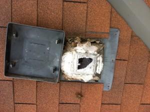 dryer roof vent